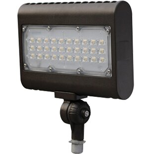 Guide to buy 2-Light LED Flood Light By Morris Products