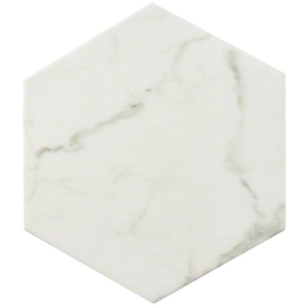 Karra Carrara 7 x 8 Porcelain Field Tile in White/