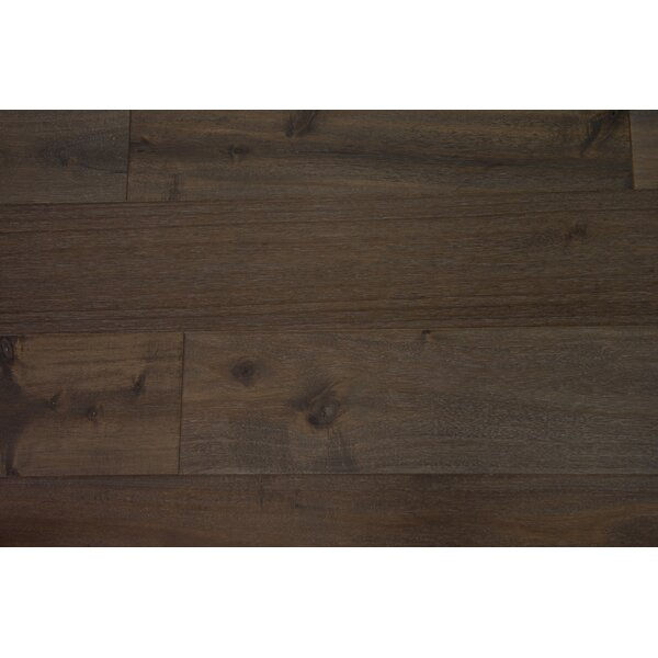 Dublin 6-1/2 Engineered Acacia Hardwood Flooring in Sunflower Seed by Branton Flooring Collection