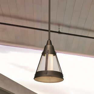 Read Reviews Humphries 1-Light Outdoor Pendant By Longshore Tides