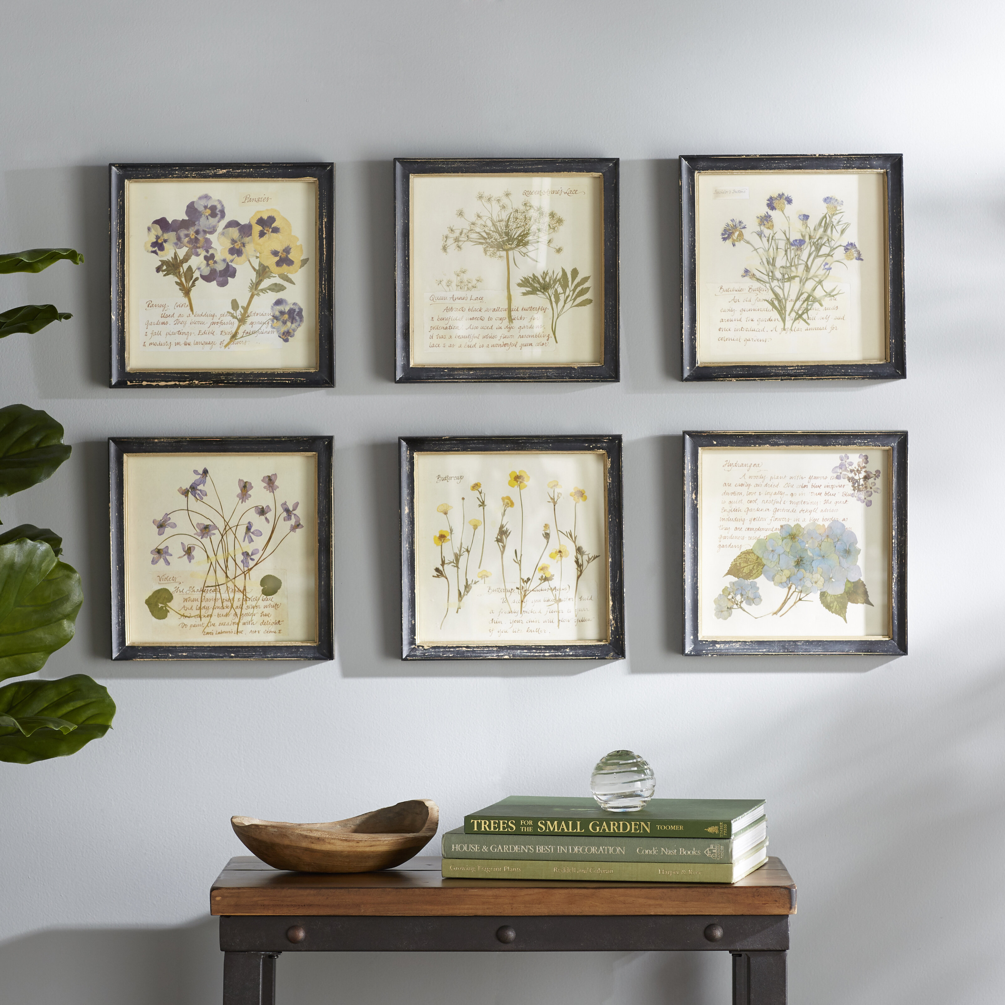 Birch Lane Square Wood Framed Wall Decor With Floral Images 6 Piece Picture Frame Graphic Art Print Set On Reviews Wayfair