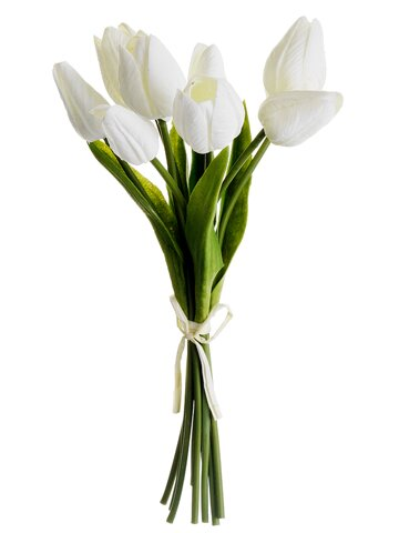 Soft Touch Tulip Bundle (Set of 8) by Ophelia & Co.