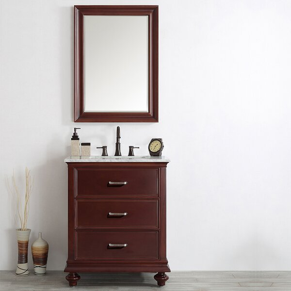 Vaughn 30 Single Vanity Set with Mirror by Alcott Hill