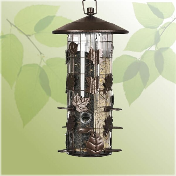 Squirrel-Be-Gone III Caged Tube Bird Feeder (Set o