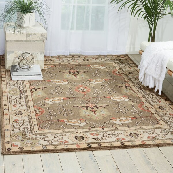 Hester Gray Area Rug by Nourison