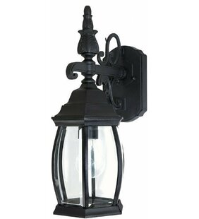 Compare & Buy Herkimer Rustic 1-Light Outdoor Wall Lantern By Alcott Hill
