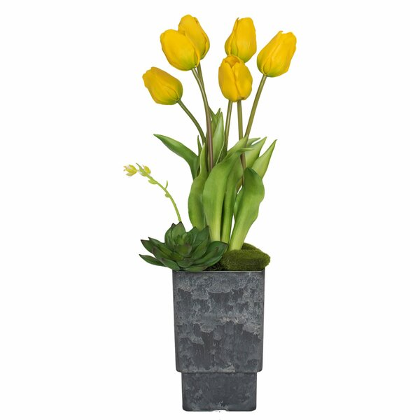 Tulips Floral Arrangement in Decorative Vase by House of Hampton