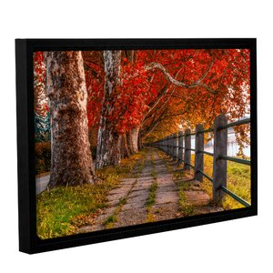 Walk By The River Framed Photographic Print by Red Barrel Studio