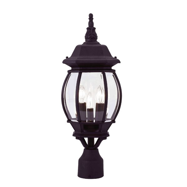 Kelly Outdoor 3-Light Lantern Head by Darby Home Co