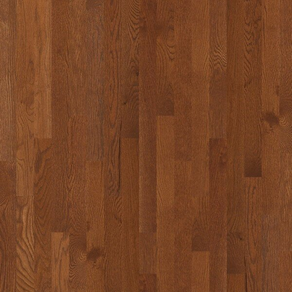 3-1/4 Solid Oak Hardwood Flooring in Leather by Welles Hardwood
