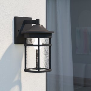 Ilene 1-Light Outdoor Wall Lantern