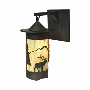 Pasadena 1-Light Outdoor Wall Lantern By Steel Partners Outdoor Lighting