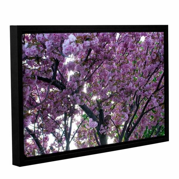 Spring Flowers by Dan Wilson Framed Photographic Print on Wrapped Canvas by ArtWall