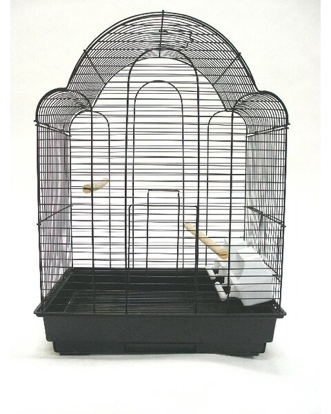 Olvera Shell Top Bird Cage by Tucker Murphy Pet