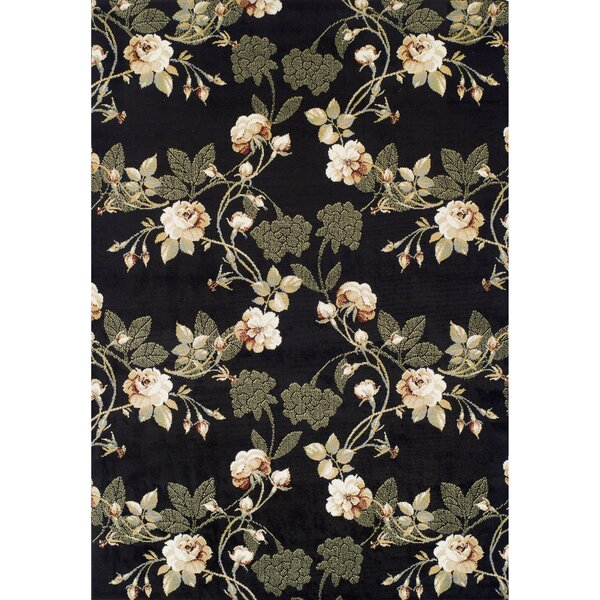 Ferrera Black Area Rug by Achim Importing Co