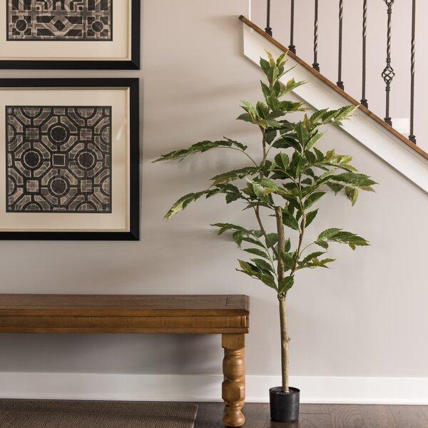 Nandina Foliage Tree in Pot by Charlton Home