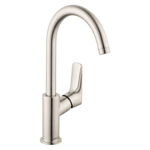 Logis Faucet with Drain Assembly by Hansgrohe
