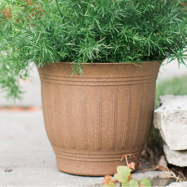 Fellman Plastic/Resin Pot Planter by Charlton Home