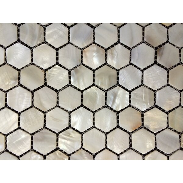 1 x 1 Seashell Mosaic Tile in Natural by Matrix-Z