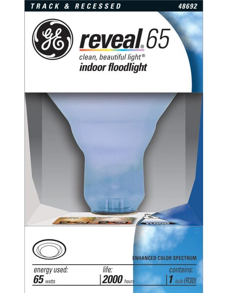 65W Flood Incandescent Light Bulb by GE Lighting