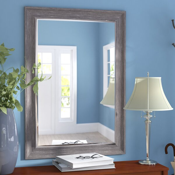 Modesto Transitional Driftwood Wall Mirror by Three Posts