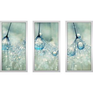 Feeling Blue But Dandy by Sharon Johnstone 3 Piece Framed Photographic Print Set by Picture Perfect International