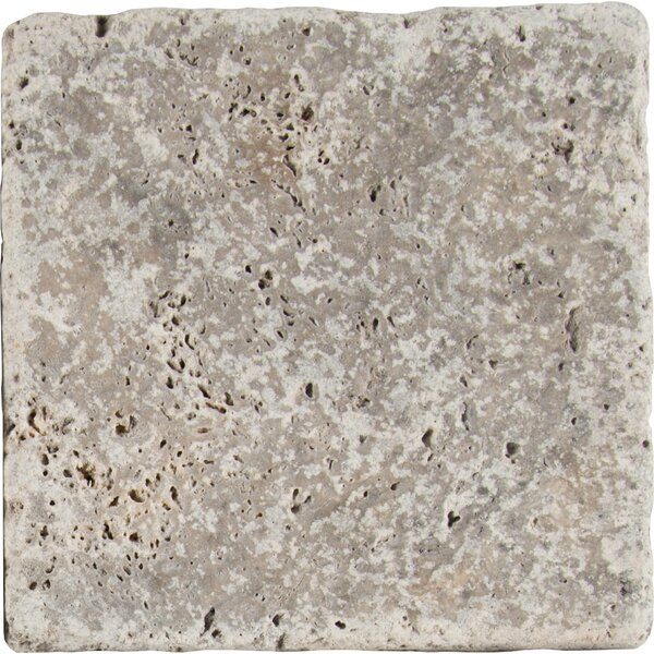 Tumbled 6 x 6 Travertine Field Tile in Gray by MSI