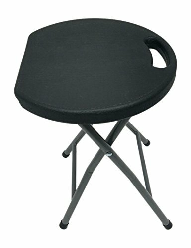 Astoria Metal and Plastic Folding Accent Stool by Ebern Designs