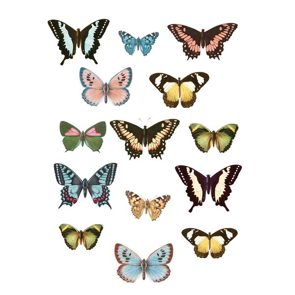 Guyton Spread Your Wings Wall Decal by August Grove