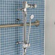 Afwall Millennium Flowise Elongated Bathroom Shower by American Standard