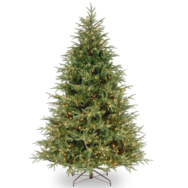 Green Fir Artificial Christmas Tree with Dual Color® LED Lights with Stand by Highland Dunes