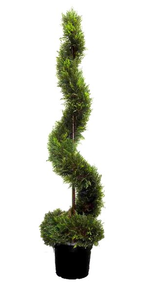 Artificial Cypress Leave Spiral Topiary Plant in Pot by Admired by Nature