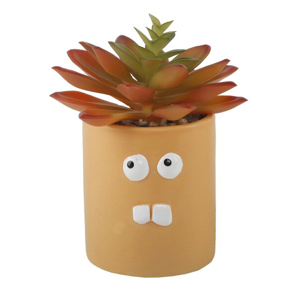 Desktop Faux Succulent Plant in Ceramic Crazy Eyes Pot by The Holiday Aisle