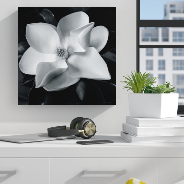 Magnolia Photographic Print on Wrapped Canvas by Z