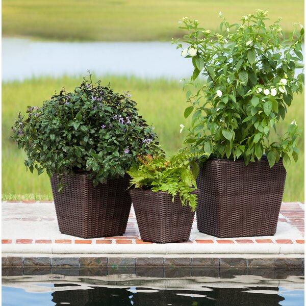 Piazza 3-Piece Wicker Pot Planter Set by PatioSense
