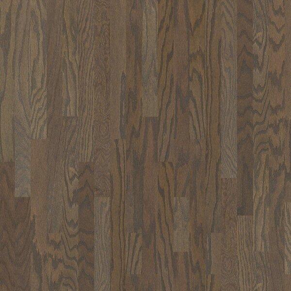 Shotgun 3 Engineered Oak Hardwood Flooring in Trigger by Shaw Floors