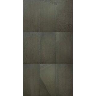 S Tones Braun 15 X 30 Porcelain Field Tile In Brown