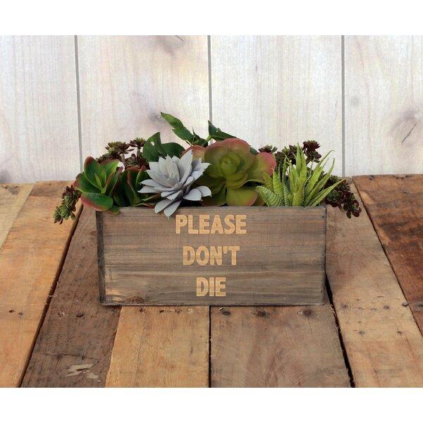 Lyons Personalized Wood Planter Box by Winston Porter