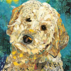 'Art Dog Doodle' by Sandy Doonan Graphic Art on Wrapped Canvas by Portfolio Canvas Decor