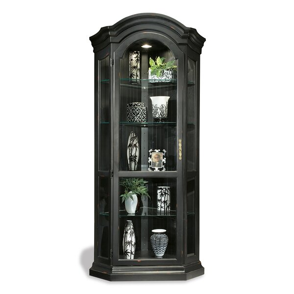 Shelia Solid Poplar Lighted Corner Curio Cabinet by Darby Home Co