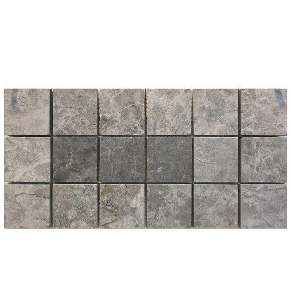 Polished 2 x 2 Marble Mosaic Tile in Marine Fantasy by QDI Surfaces