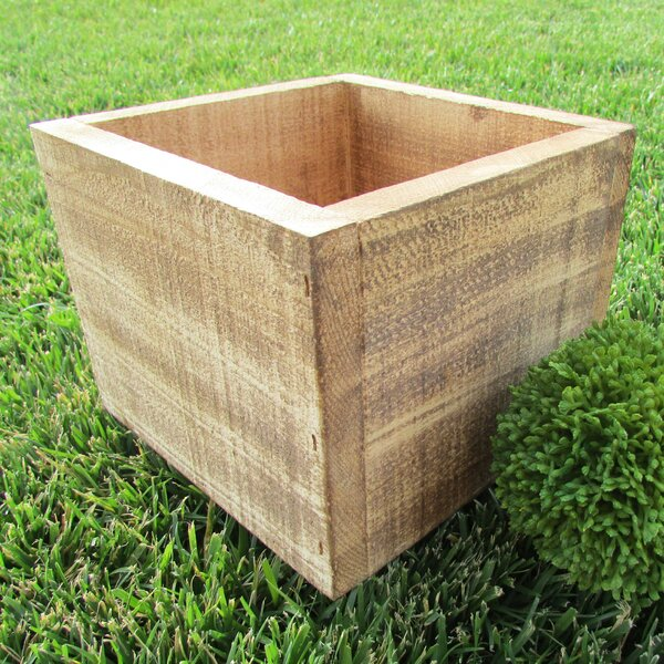 Planter Box by Established 98