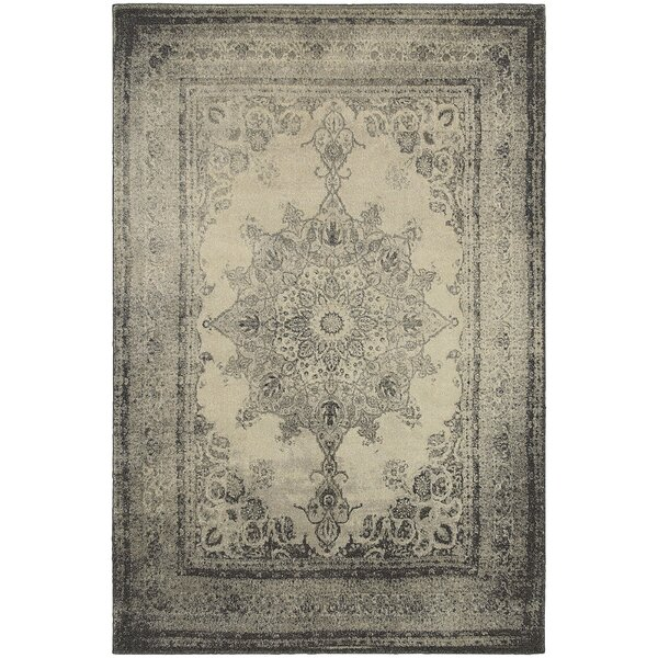 Blaine Ivory/Gray Area Rug by Bungalow Rose
