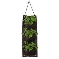 Touch of Eco Organic Hanging Oregano Growing Kit Deals