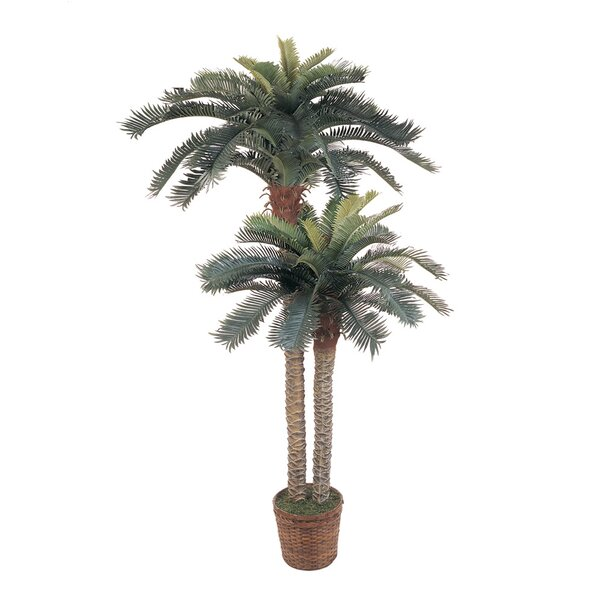Palm Double Potted Tree in Basket by Beachcrest Home