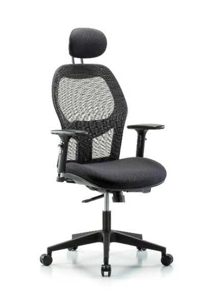 Peter Executive Desk Height Ergonomic Office Chair by Symple Stuff