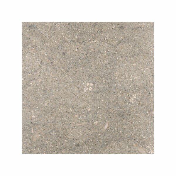 Sea Grass 3 x 6 Limestone Field Tile in Gray by Parvatile