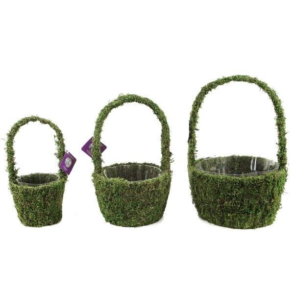 Deco Basket 3-Piece Pot Planter Set by SuperMoss™