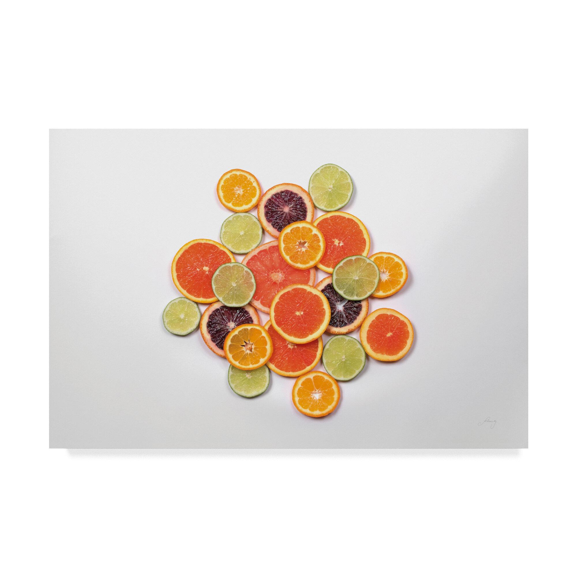 Ebern Designs Sunny Citrus Ii Acrylic Painting Print On Wrapped Canvas Wayfair