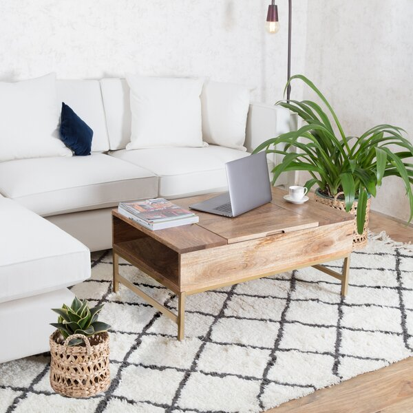 Kassidy Lift Top Coffee Table with Storage by Modern Rustic Interiors